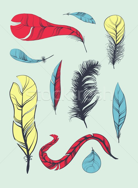 Vector Set of Sketch Plumage Stock photo © Mamziolzi