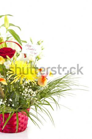 Basket with flowers for Mother  Stock photo © manaemedia