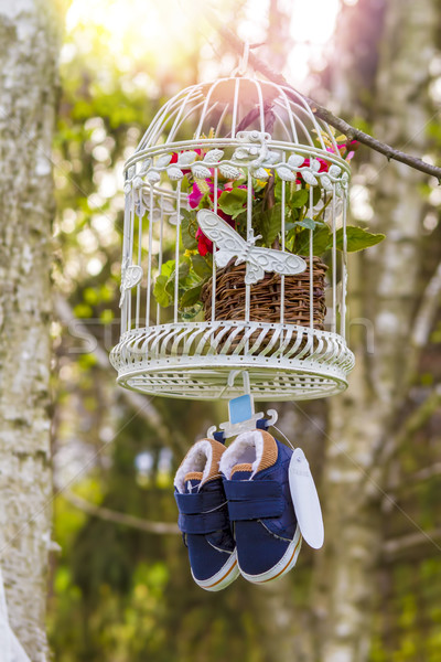Azul zapatos de bebé colgante jaula rama flor Foto stock © manaemedia
