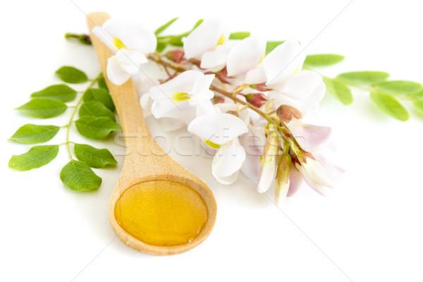 Honing lepel bloem witte voedsel groene Stockfoto © manaemedia