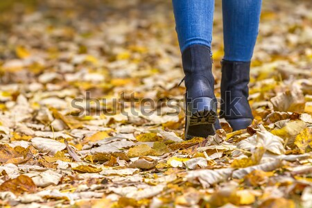 Homme jambes bottes femme pieds Photo stock © manaemedia