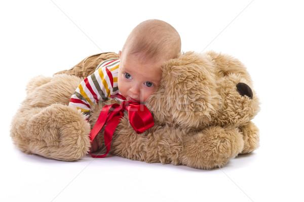 baby boy over plush dog on white background Stock photo © manaemedia