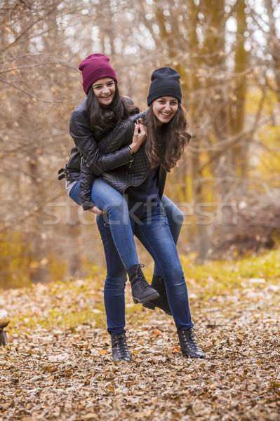 Due ragazze autunno parco ridere Foto d'archivio © manaemedia