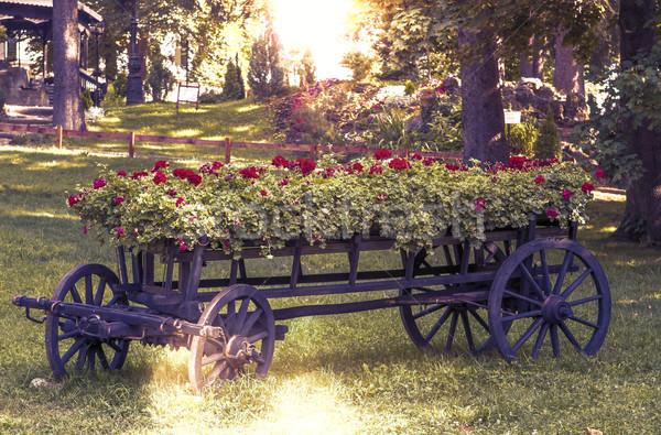 Oude wiel winkelwagen bloemen park boom Stockfoto © manaemedia