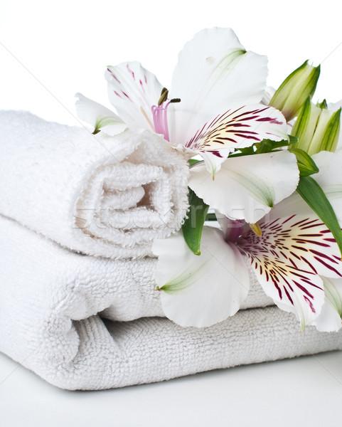 Ressources spa blanche serviette fleur isolé Photo stock © manera