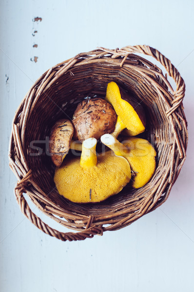 Ehető gombák nagy ősz fonott kosár Stock fotó © manera