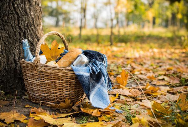 ősz piknik park kosár pléd kávé Stock fotó © manera