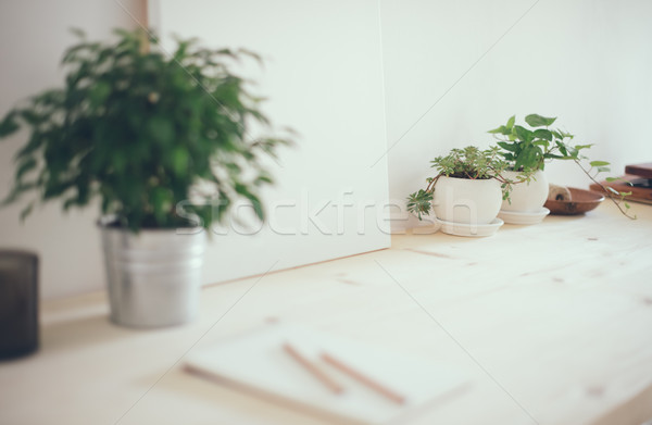 Travaux espace plantes toile table Photo stock © manera
