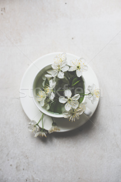 Cherry blossom in a white cup Stock photo © manera