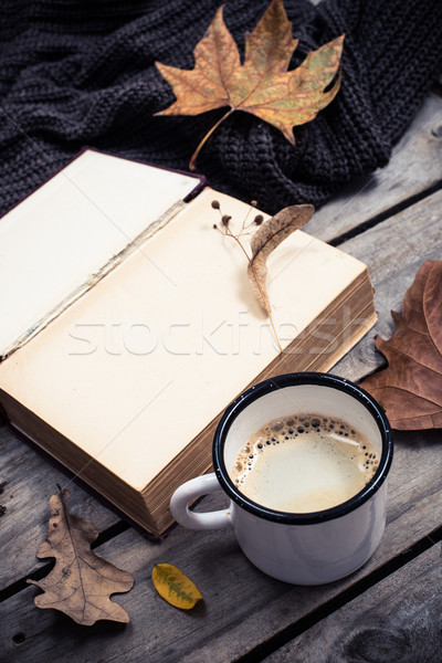 vintage book, knitted sweater with autumn leaves and coffee mug Stock photo © manera