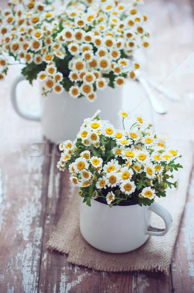 Vintage esmalte camomila dois flores Foto stock © manera