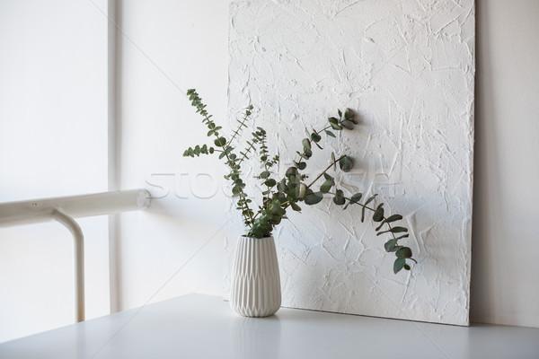 ágak váza asztal fehér szoba minimalista Stock fotó © manera