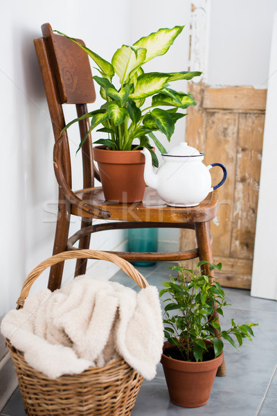 Foto stock: Decoração · verão · varanda · vintage · esmalte · chá