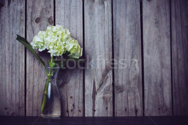 hydrangea flower  Stock photo © manera