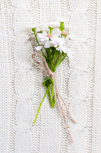 wild flowers on a beige knitted texture Stock photo © manera