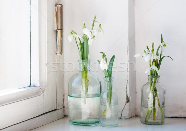 spring flowers Stock photo © manera