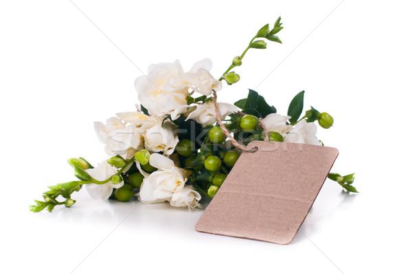 Boş kart taze beyaz yalıtılmış Stok fotoğraf © manera