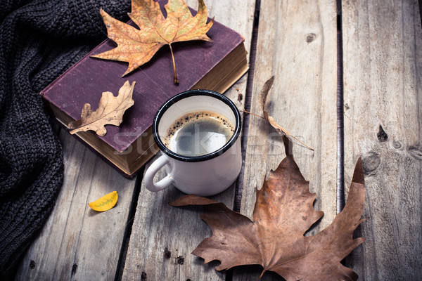 Old book, knitted sweater with autumn leaves and coffee mug Stock photo © manera