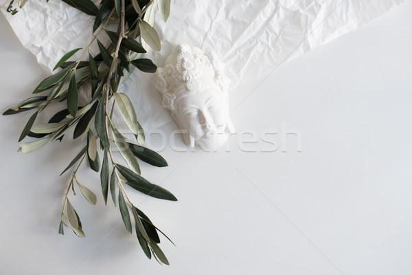 Olijfolie keramische decoratief objecten Stockfoto © manera