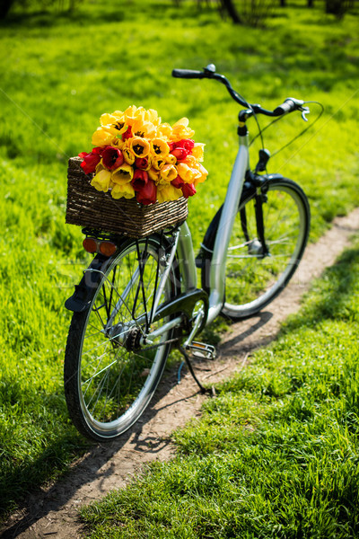 bicycle with a wicker basket and spring flowers  Stock photo © manera