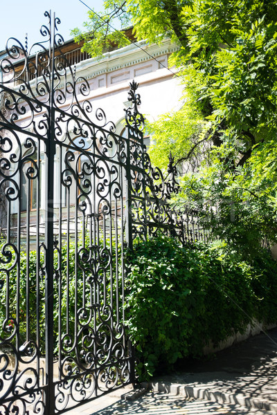 New wrought iron gates and the green trees Stock photo © manera