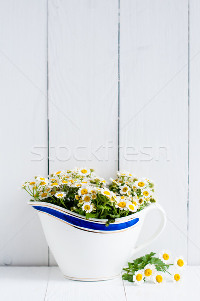 rustic decor Stock photo © manera
