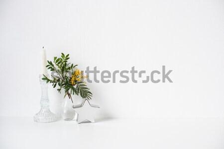 Zielone domu roślin ceramiczne puli biały Zdjęcia stock © manera