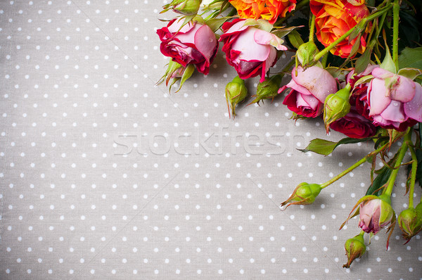 multicolored roses on gray linen fabric  Stock photo © manera