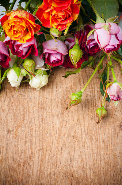 Stock fotó: Tarka · rózsák · fa · deszka · gyönyörű · virágcsokor · közelkép