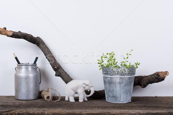 Stílus lakberendezés rusztikus fa deszka növények fehér Stock fotó © manera