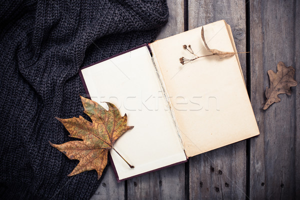Lege vintage boek gebreid trui Stockfoto © manera