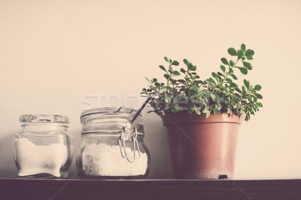 Konyha polc házi növény edény fal Stock fotó © manera
