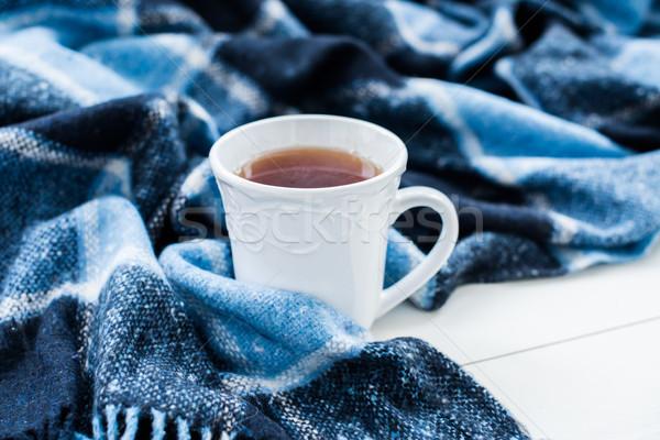 hot tea and a blue checkered plaid Stock photo © manera