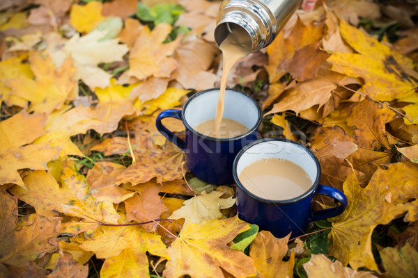 Iki sıcak kahve emaye park sarı Stok fotoğraf © manera