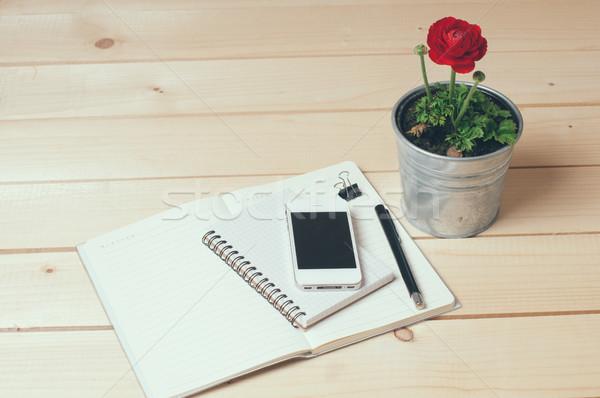 Rustykalny ministerstwo spraw wewnętrznych notebooki pióro kwiat Zdjęcia stock © manera