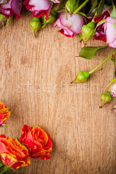 Roses belle bouquet Photo stock © manera