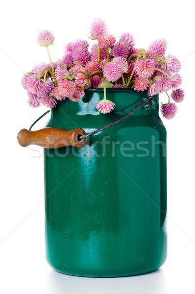 milk can and a bouquet  Stock photo © manera
