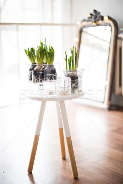 Minimalist oda beyaz bahar iç Stok fotoğraf © manera