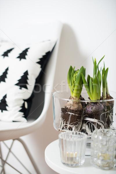 Meubels witte voorjaar interieur Stockfoto © manera