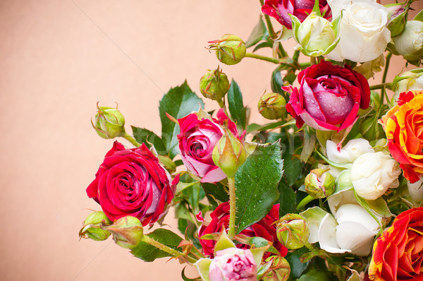 bouquet of multicolored roses on a brown background  Stock photo © manera