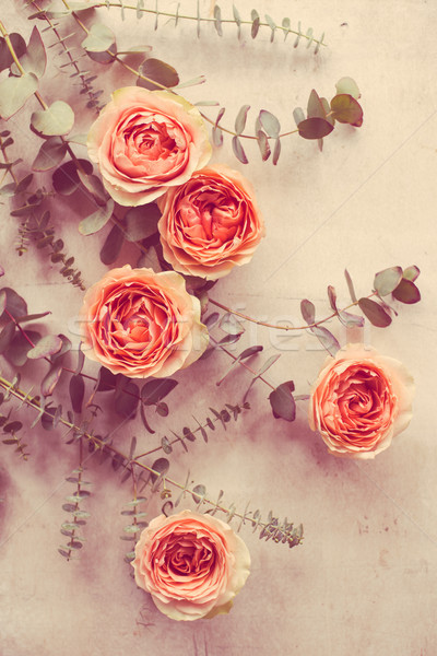 orange roses and decorative branches on white textured backgroun Stock photo © manera