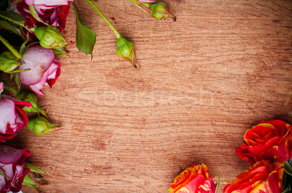 multicolored roses on a wooden board Stock photo © manera