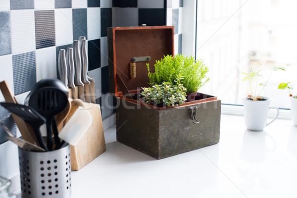 кухне кухонные принадлежности современных интерьер кухни Сток-фото © manera