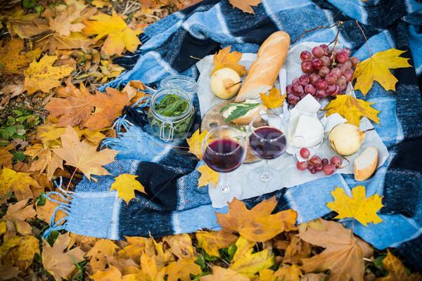 cozy autumn picnic  Stock photo © manera