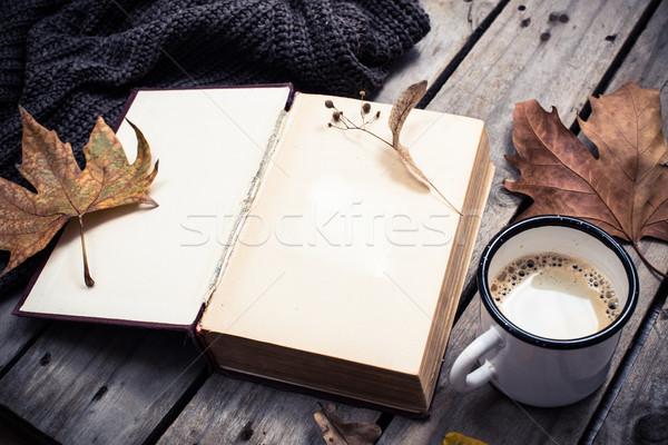 Zdjęcia stock: Vintage · książki · trykotowy · sweter · kubek · kawy