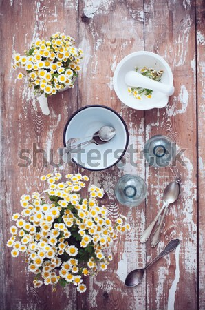 rustic table setting Stock photo © manera