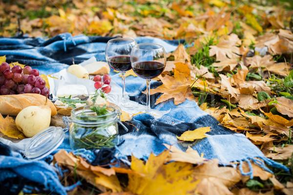 Stock fotó: Kényelmes · ősz · piknik · park · friss · kenyér