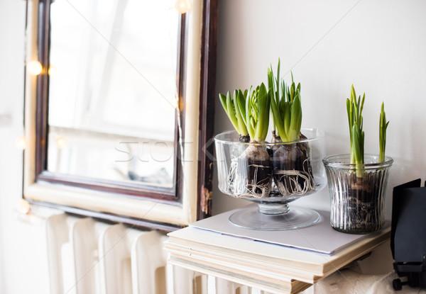 ミニマリスト ルーム 装飾 白 春 インテリア ストックフォト © manera