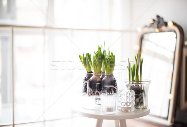 комнату белый весны интерьер Сток-фото © manera