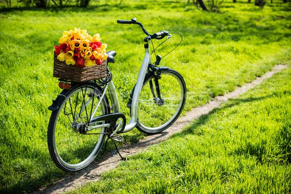 Foto stock: Bicicleta · cesta · flores · de · primavera · ciudad · flores